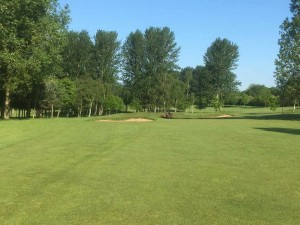 Course - fairway